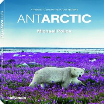 Antarctic_Poliza Michael